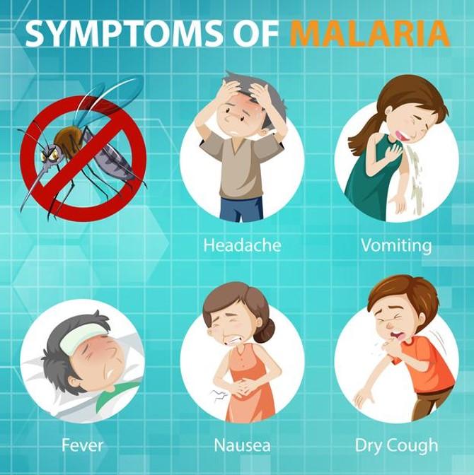 Malaria hasn't gone away – IMCA
